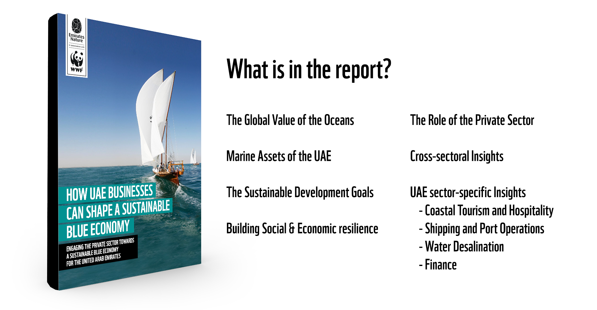 UAE's Sustainable Blue Economy Report - What is inside?