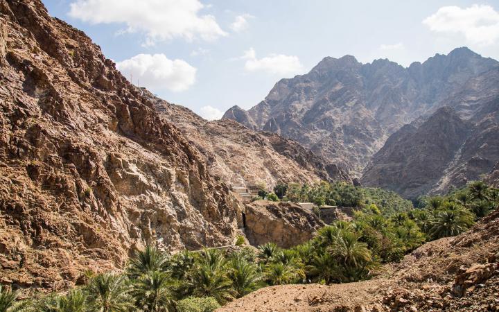Home   Emirates Nature-WWF